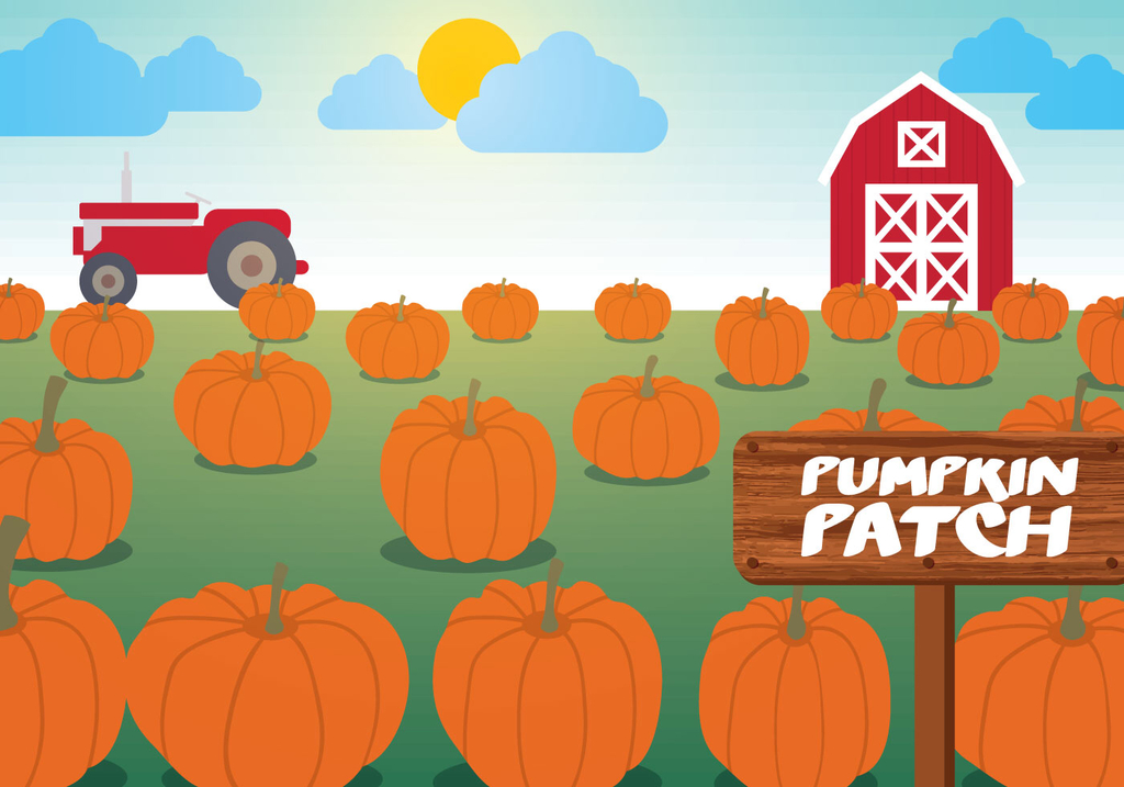 Pumpkin Patch Field Trip Information